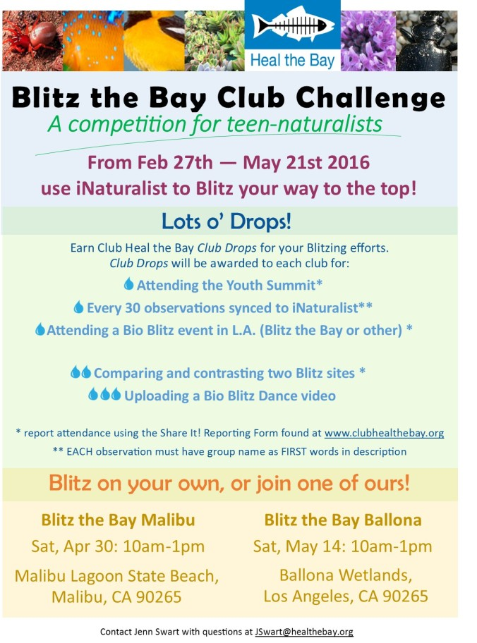 Blitz the Bay Challange- Club Drops