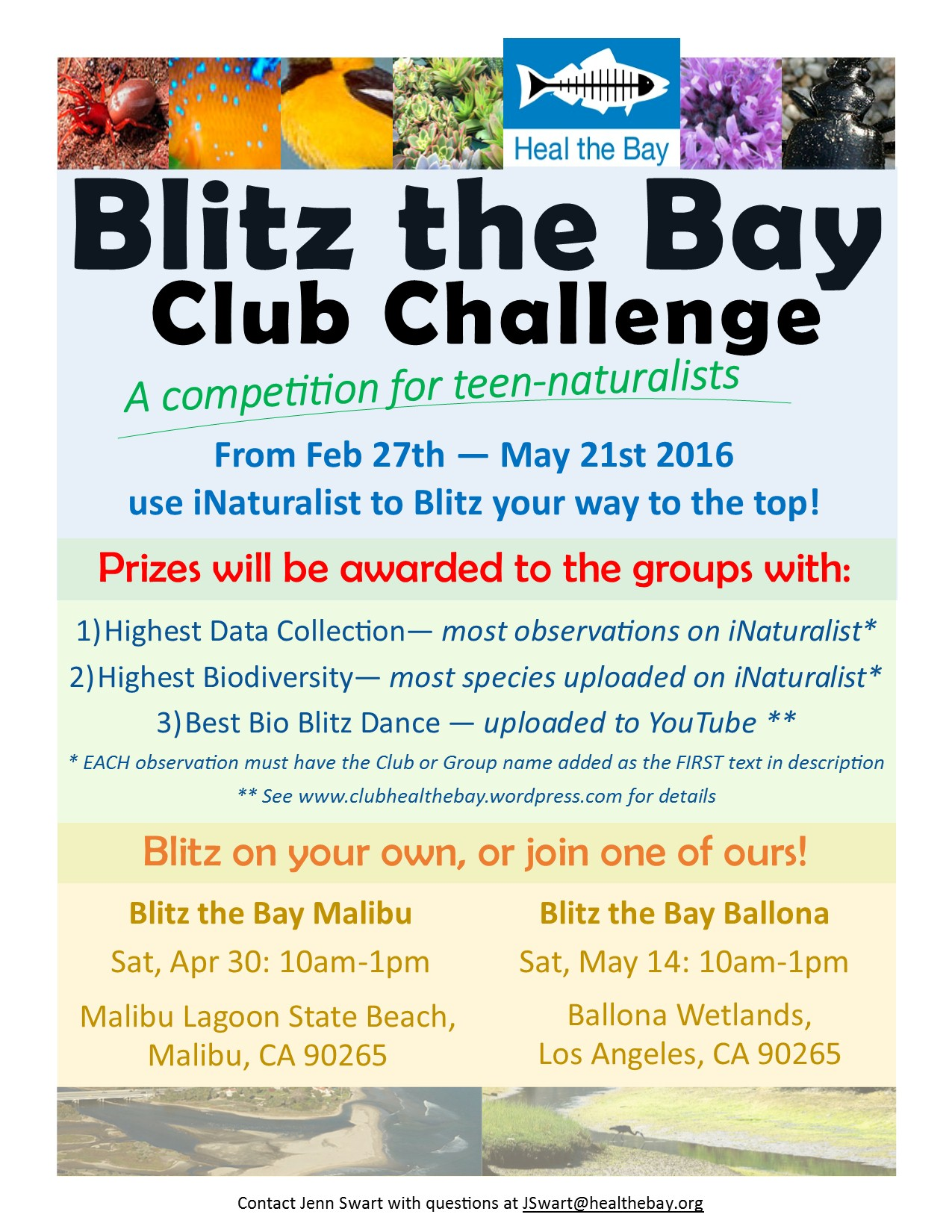 Blitz the Bay Club Challenge | Club Heal the Bay