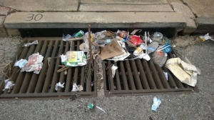 Storm drains move water. trash and pollutants out to sea