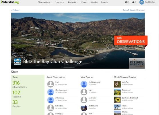 Blitz the Bay Club Challenge