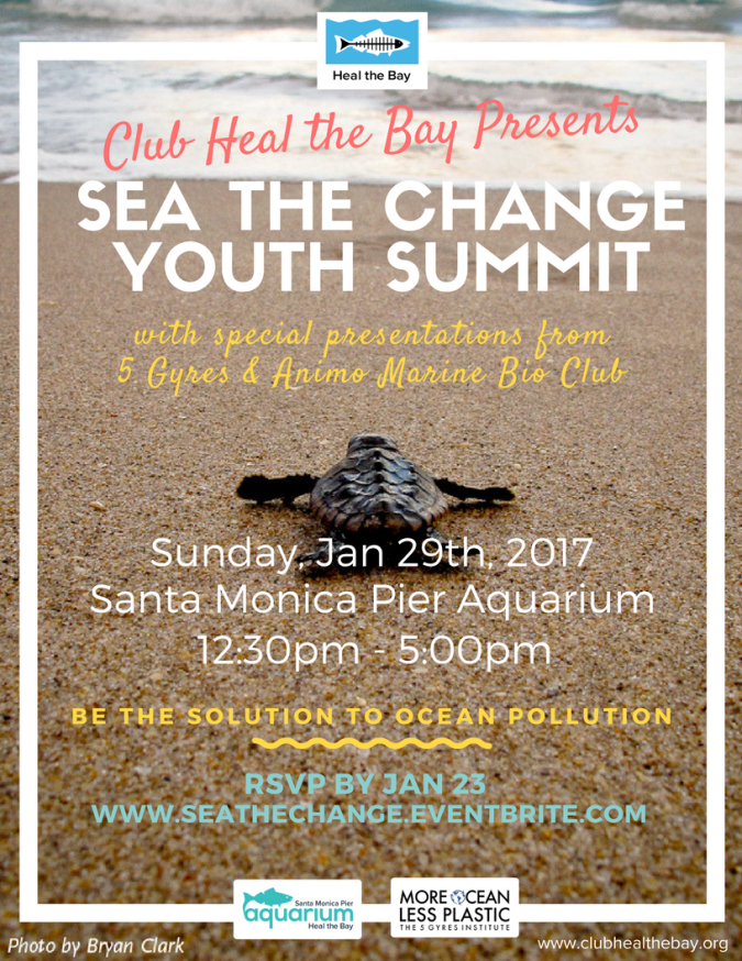 sea-the-change-youth-summit-flyer